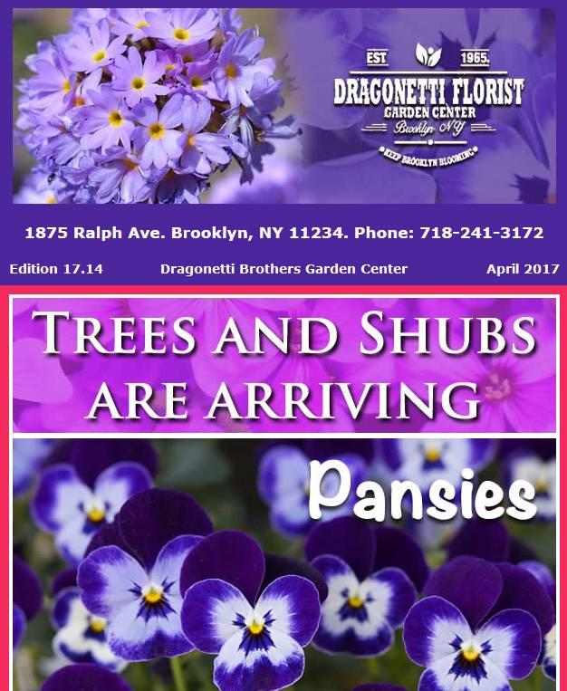 Dragonetti Brothers Garden Center Newsletter