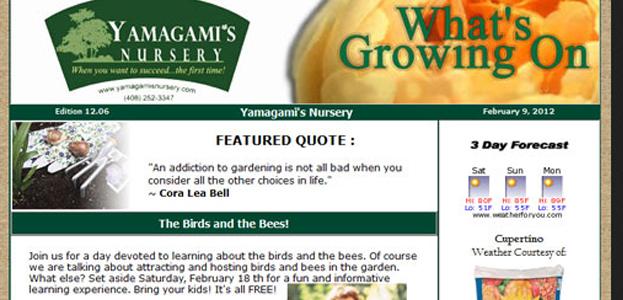 yamagamis nursery - current newsletter