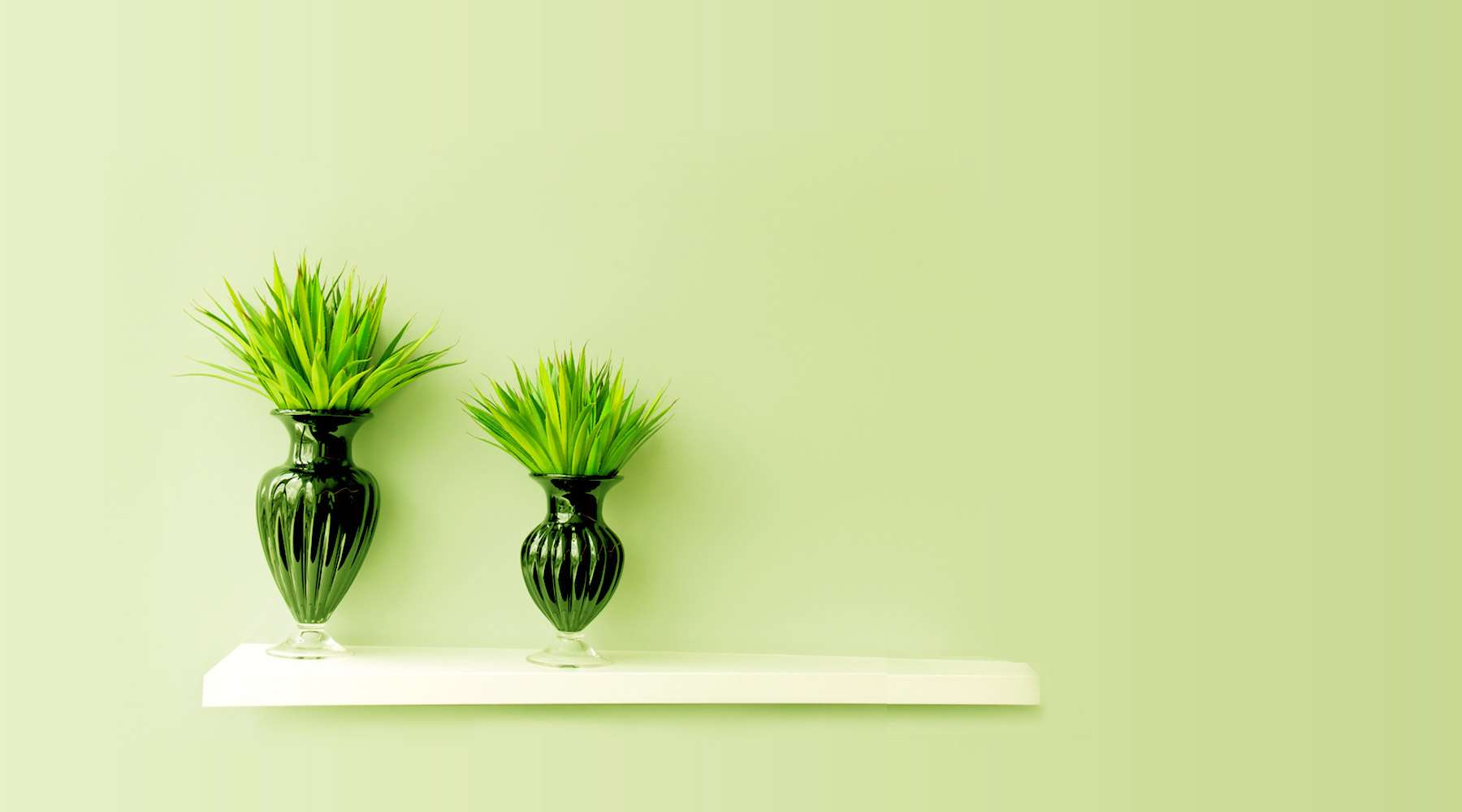 garden-center-marketing-site-affordable-pricing-bg