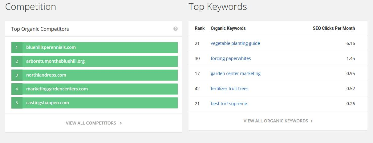 competition sites top competition keywords report