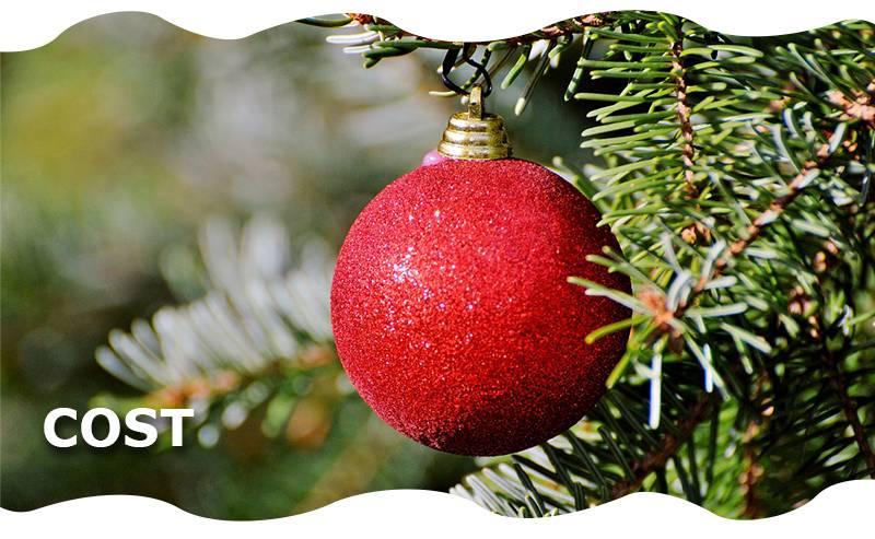 Christmas-Tree-Campaign-eblast-cost-will-be